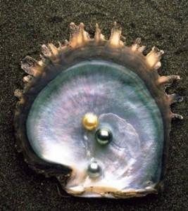 perle-1-e1416832351742 (1)